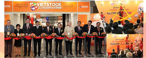 vietstock-opening